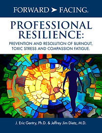 FF Prof.Resilience-Cover.jpg