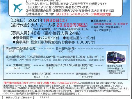 新春!! 富士山遊覧飛行と大井神社初詣