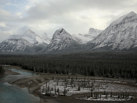 Le parcours: La Promenade des Glaciers - Icefield Parkway  ( Canada)