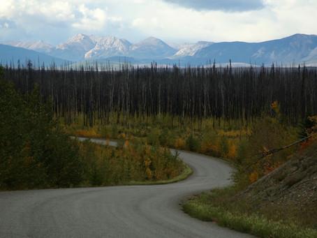 Le parcours: La Cassiar Highway et la Mitten Forest Service Road (Canada)
