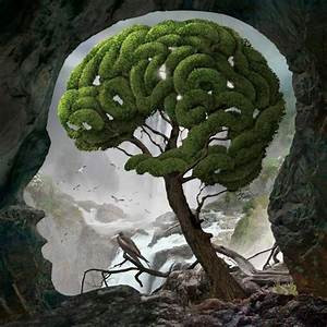 The Soil of The Mind. The Harvest of Vision.