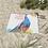 Thumbnail: The Peacock in Kasteel van Gaasbeek