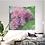 Thumbnail: Flowers VIII, Royal Garden, Brussels