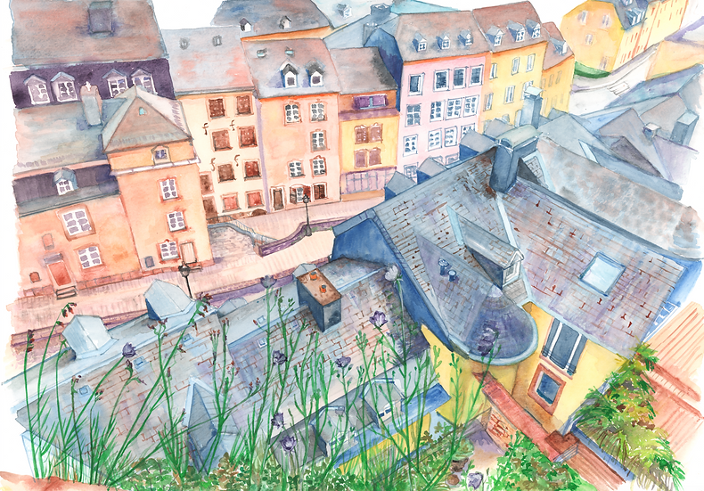 Luxembourg roofs