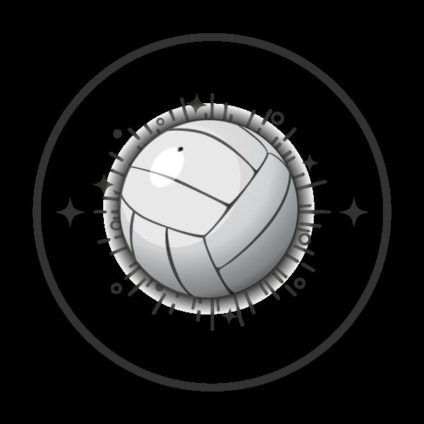 Volleyball-Club