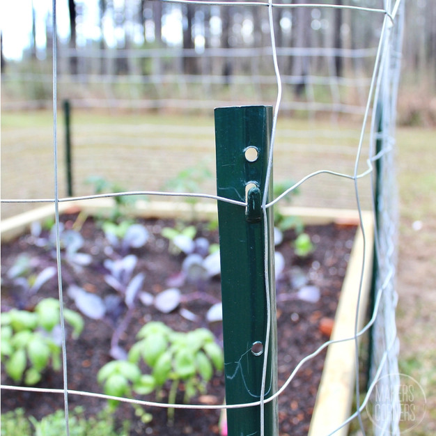 4 Ways to Protect Your Garden