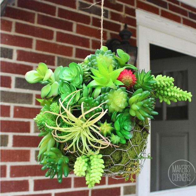 DIY: Hanging Succulent Ball