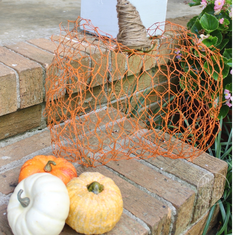 chicken-wire-pumpkin-5