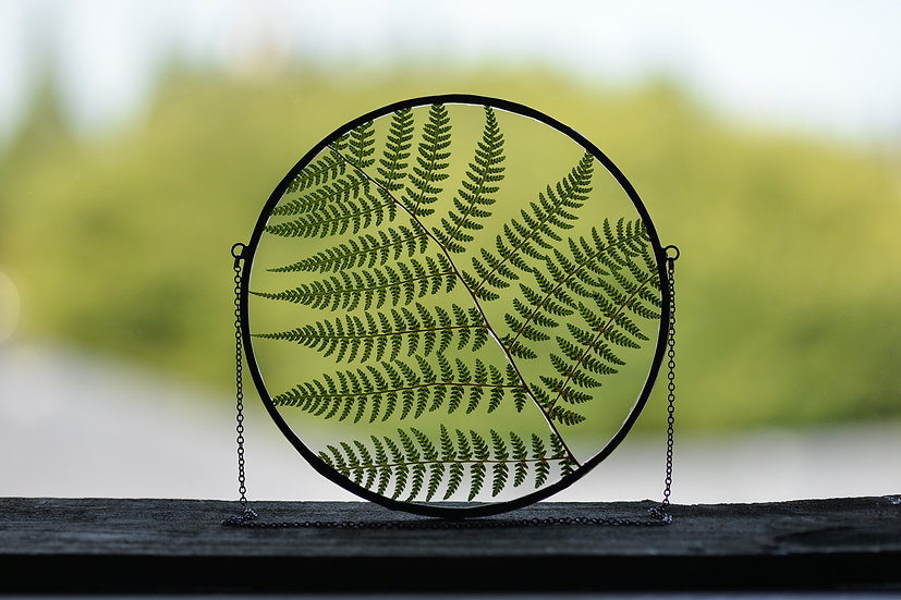 "Lady Fern - 6"" Round Stained Glass Float Frame (#2)"