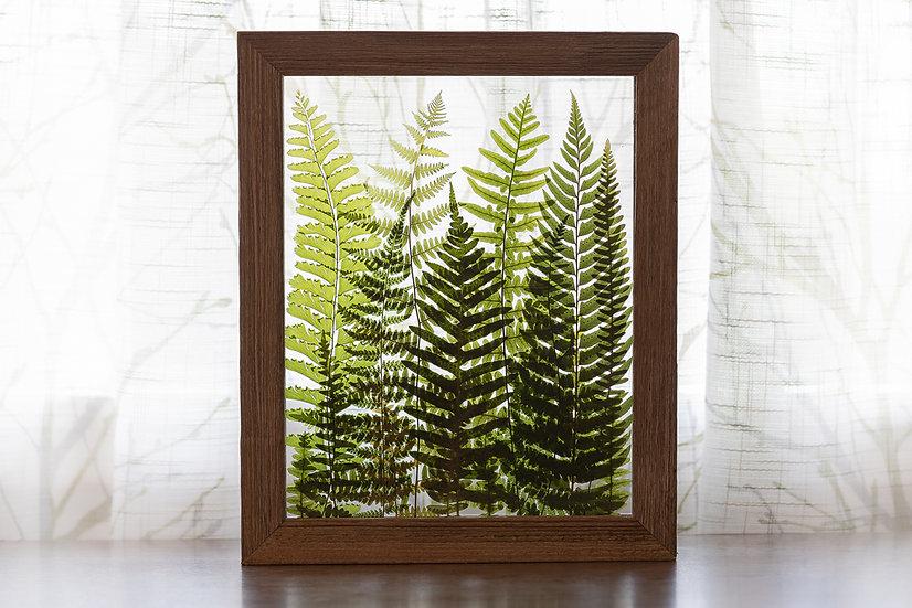 """Fern Forest - 8x10"""" Tan Rustic Wood Frame"""