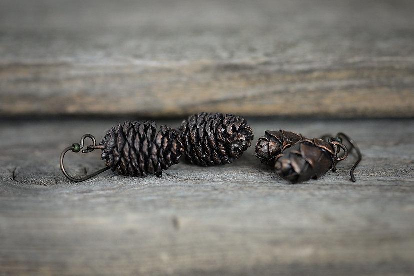 Preserved Hemlock & Alder Cone Earrings