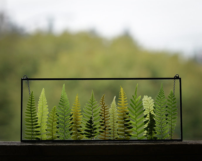 """Fern Forest - 10x4"""" Rectangle Stained Glass Float Frame (#2)"""