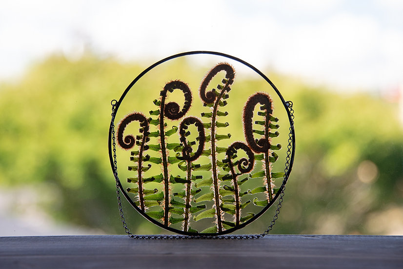 """Fiddlehead Ferns - Stained Glass UV Frame - 6.5"""" Round (#2)"""