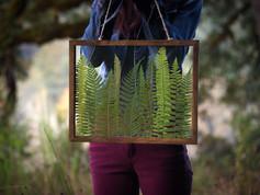 Framed Flora & Decor