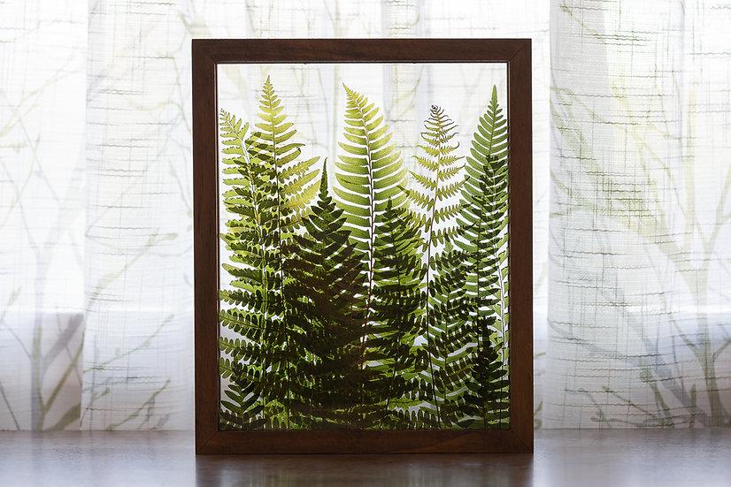 """Fern Forest - 8x10"""" Warm Brown Wood Frame"""