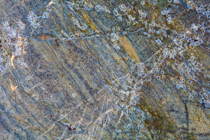 Abstracts & Intimates - Face Rock Wayside