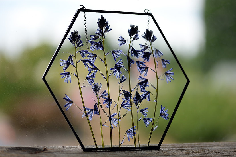 """Camassia Wildflowers - 7x7"""" Hexagon Stained Glass Float Frame"""