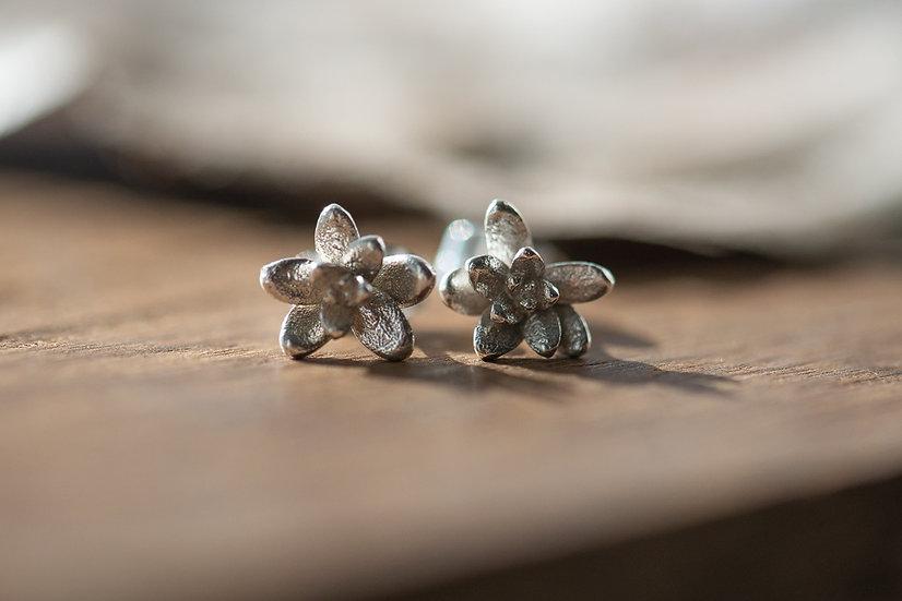 Sterling Silver Succulent Stud Earrings
