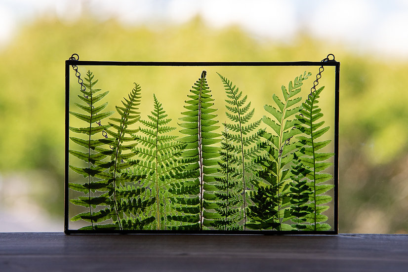 """Fern Forest - Stained Glass UV Frame - 5x8"""" Rectangle"""