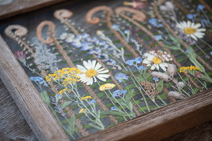 wildflowerframe2.jpg