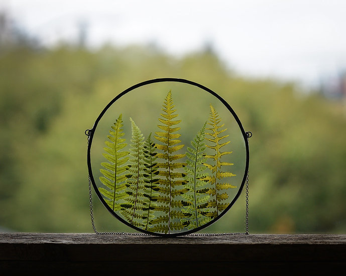 """Fern Forest - 6"""" Round Stained Glass Float Frame (#1)"""
