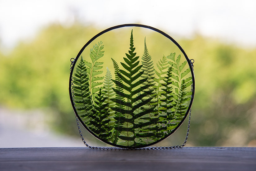"""Fern Forest - Stained Glass UV Frame - 6.5"""" Round (#1)"""