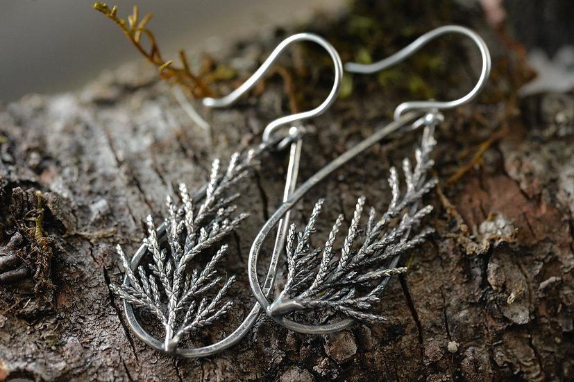 Juniper Sprig Earrings - Sterling Silver