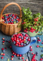 Darker Berries have Exceptional Health Benefits