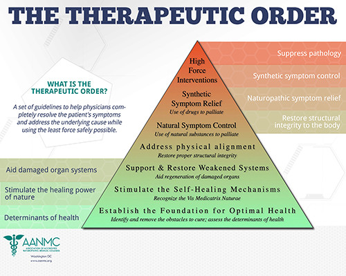Healing 101: Naturopathic Therapeutic Order