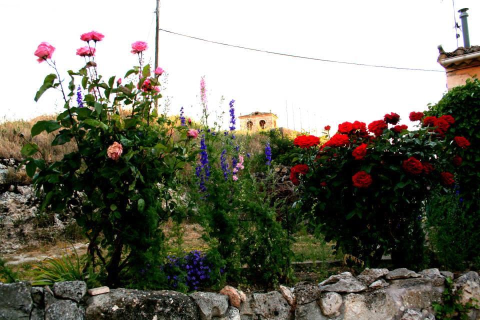 flores delante de iglesia 12.jpg
