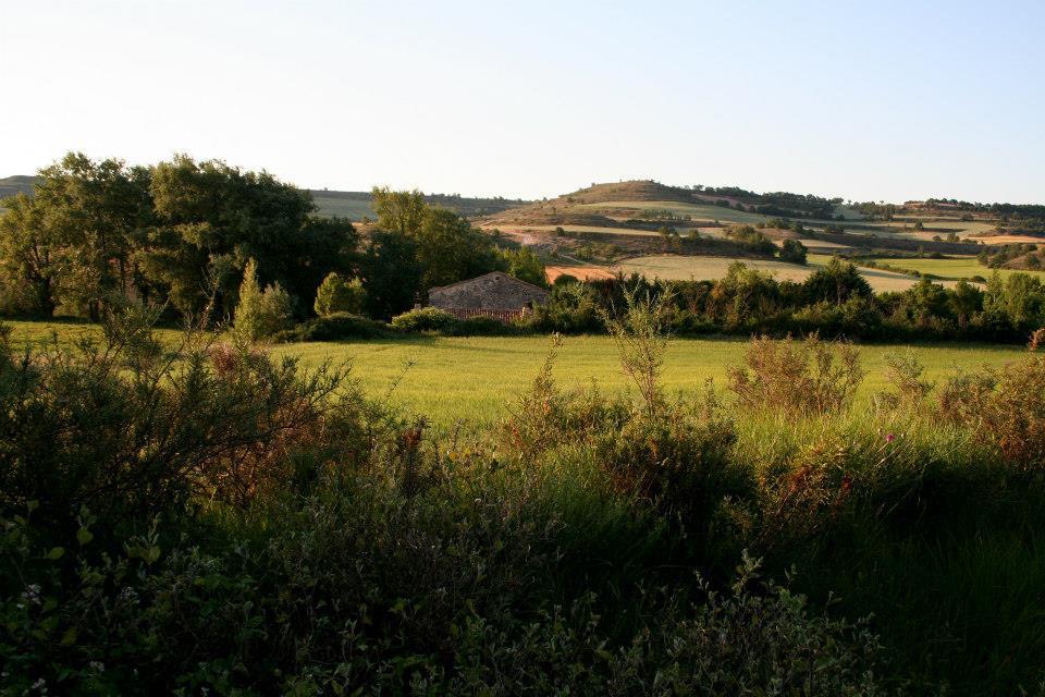paisaje 10.jpg