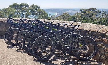 arthurs seat trek bikes