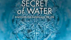 Secrets of Water — the Blueprint of Our Reality