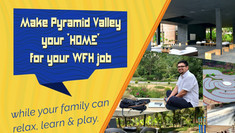 Replace Your 'Work From Home' by 'Work From Pyramid Valley'