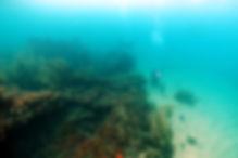 Lygnern Samuel Plimsoll Shipweck Western Australia