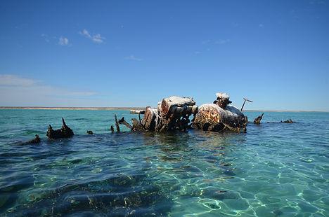 Fin  Shipweck Western Australia