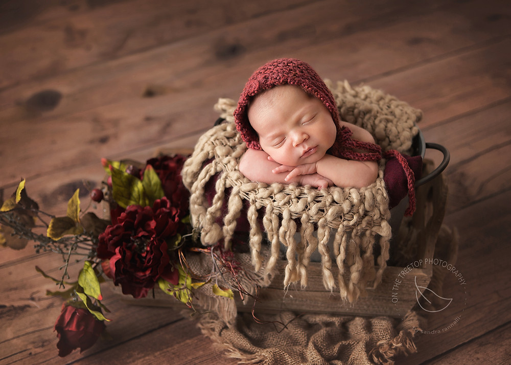 newborn girl posed in a rustic wood pail with gorgeous fall colors and textures.