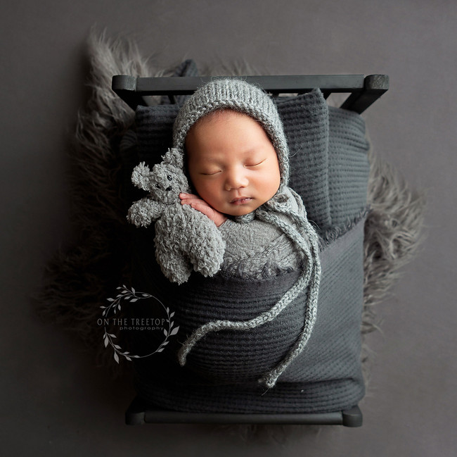 irvine newborn boy photographed by on the treetop photography