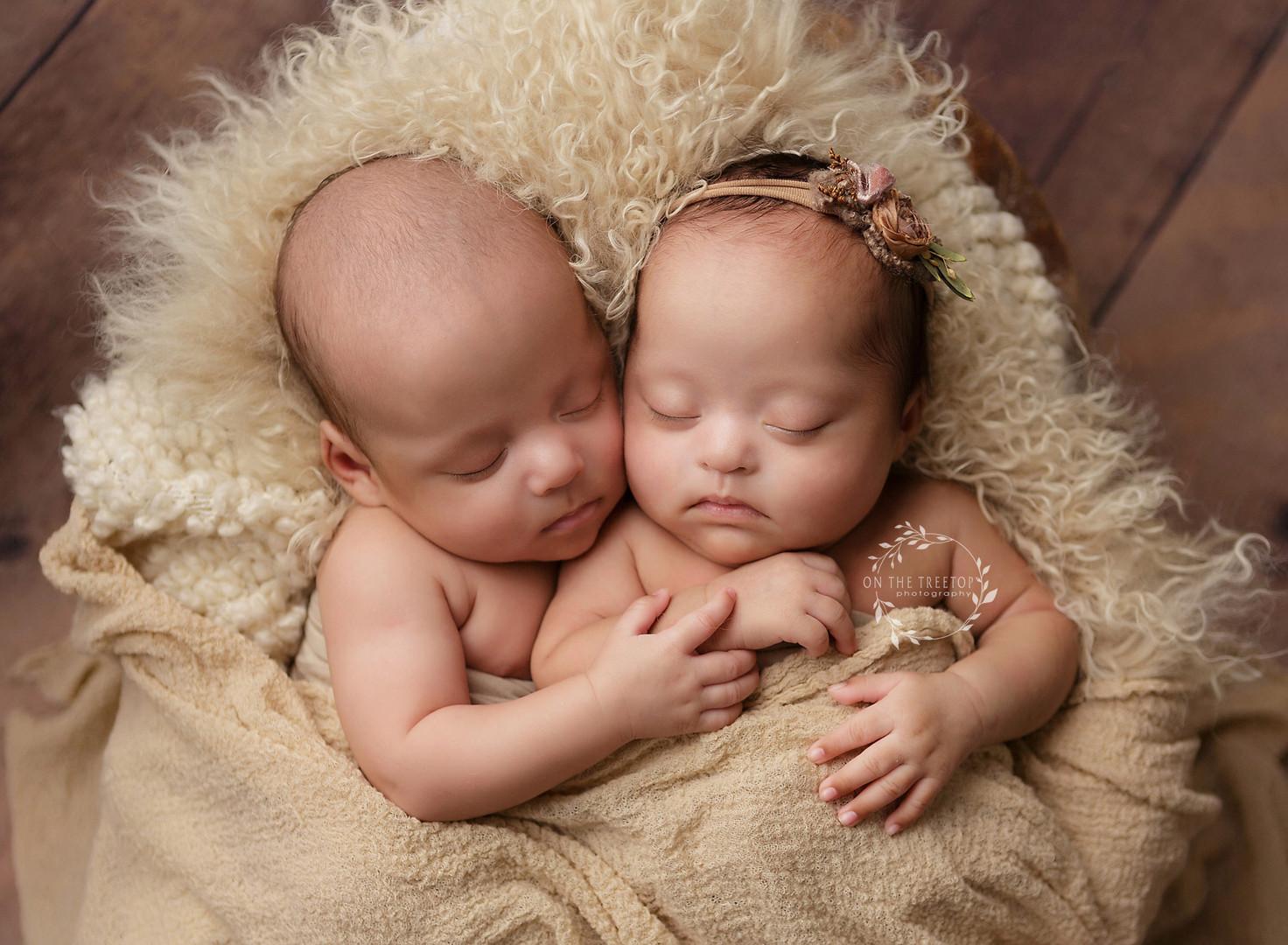 newborn-twin-photographer.jpg