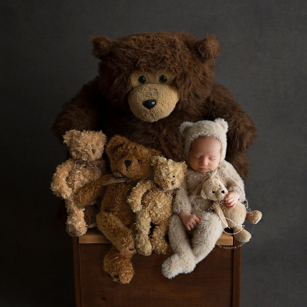 newborn boy dressed as a little bear sitting with stuffed bears
