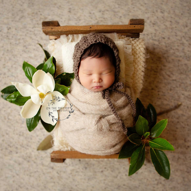 photograph of a newborn girl in a tiny bed with magnolica taken in west covina, california