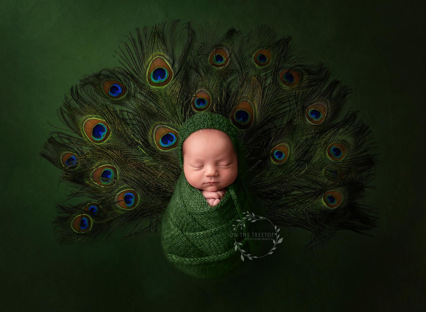 newborn-composite-photographer-cota-de-c