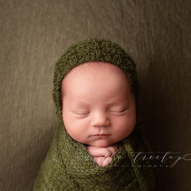 1cu-on-the-treetop-photography-newborn-s