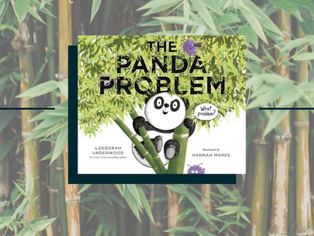 The Panda Problem | Story Structure With a Twist
