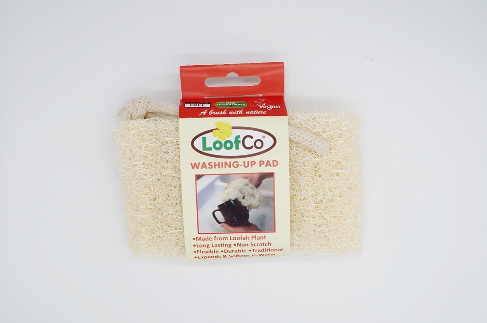 LoofCo washing up sponge