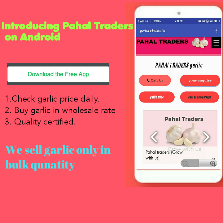 Pahal traders daily updated garlic price check