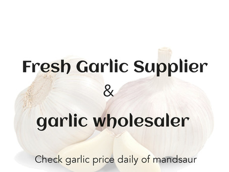 Check Garlic Price daily and Buy garlic in least Garlic price