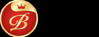 logo-v_x2.png