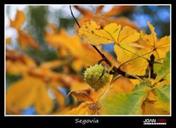 Segovia-52.jpg