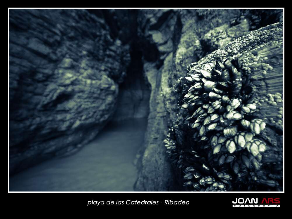 Galicia-2014-672.jpg